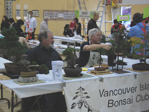 Vancouver Island Bonsai Society at the 2010 VNCS Fall Fair